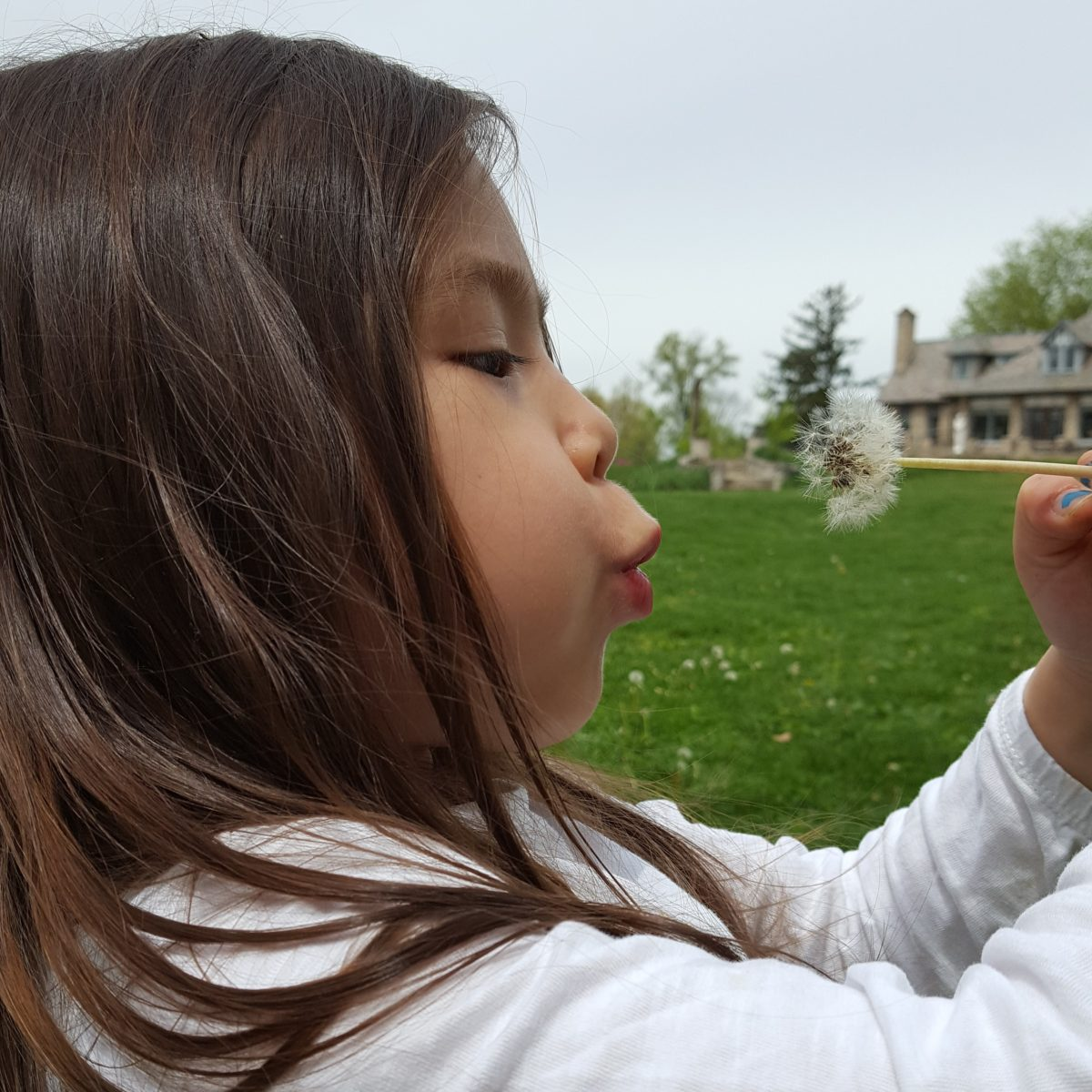 Outside is Open! Ideas for Outdoor Work and Recess During Distance Learning